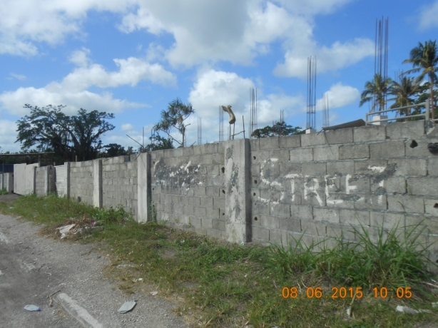 Mele Wall Development - 8 June 2015C